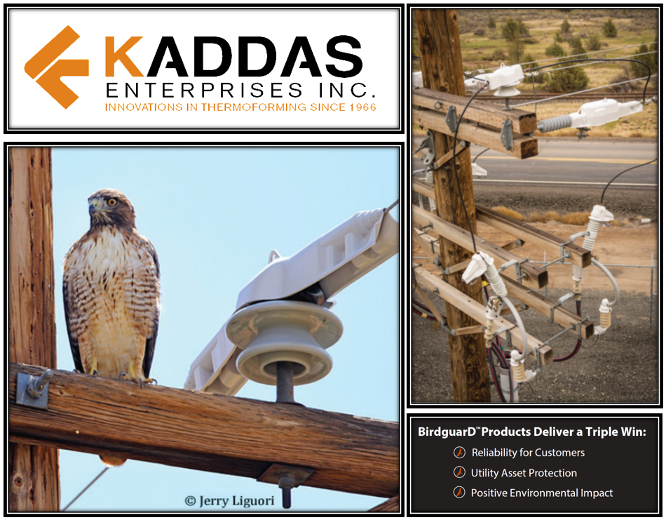kaddas enterprises inc birdguard trade