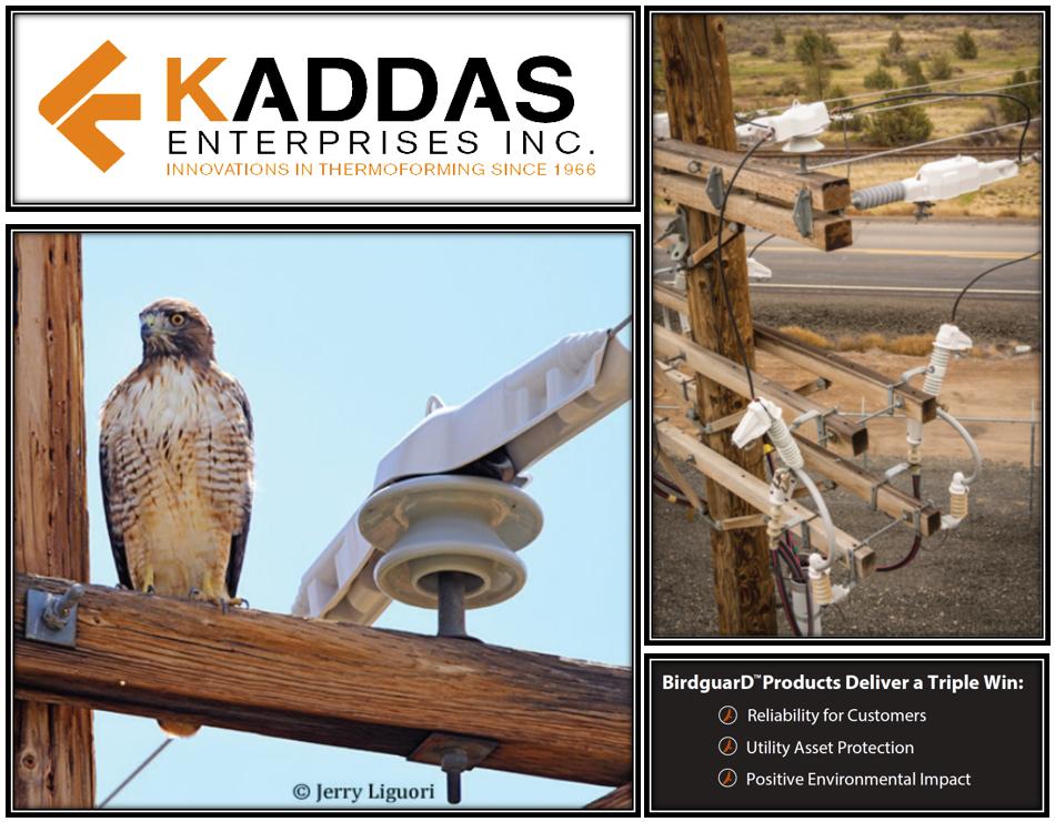 kaddas enterprises inc birdguard trade