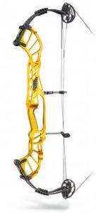 hoyt archery bow
