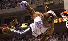 custom mascot costume utah jazz bear